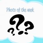 photooftheweek